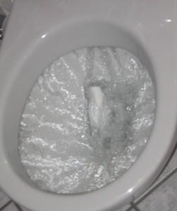 flushing_toilet1